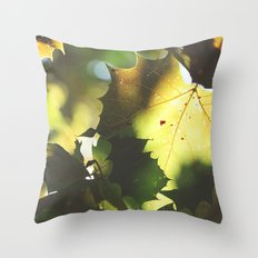 Fall Is In the Air II Throw Pillow