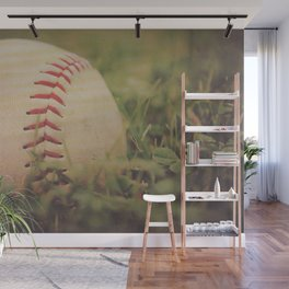 Used Baseball in Grassy Field wth Aged Effect Wall Mural