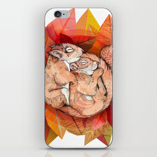 Squirrel Spoon iPhone & iPod Skin