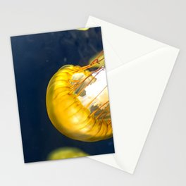 Jellyfish Sea Nettle Artwork Photography Stationery Cards