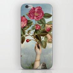 Baa-Lambs  & Shroud iPhone & iPod Skin