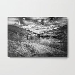 Woodland Valley Metal Print