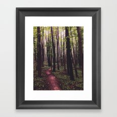 The Paths of Life Wander and Turn Framed Art Print