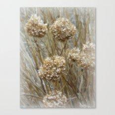 Winter Puffs Canvas Print
