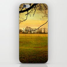 The Long Field iPhone Skin