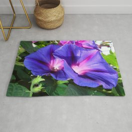 A Pair of Vibrant Morning Glories In Full Bloom Rug