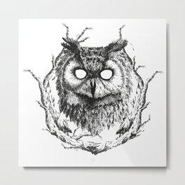 Forest Gods   Owl Metal Print