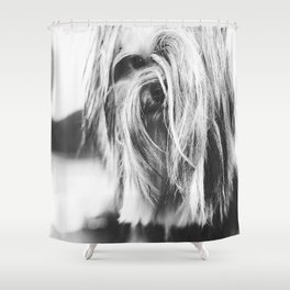 Coiffure - Yorkie - Black and White Shower Curtain