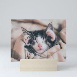 Paws Up For Naptime! Mini Art Print