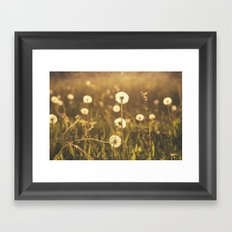 A Field of Wishes Framed Art Print