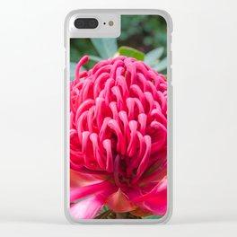 Wild Beauty Watarah Clear iPhone Case