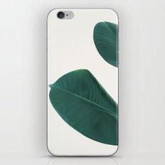 Rubber Fig Leaves I iPhone & iPod Skin