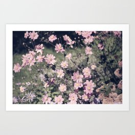 pretty faded in pink Art Print