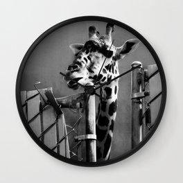 Giraffe behind Fence Wall Clock