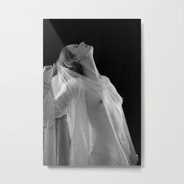 Translucent Metal Print