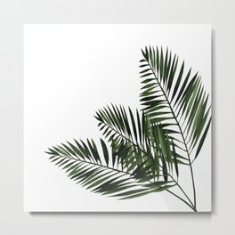 Tropical Exotic Palm Leaves I Metal Print