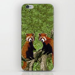 Frolicking Red Pandas iPhone Skin