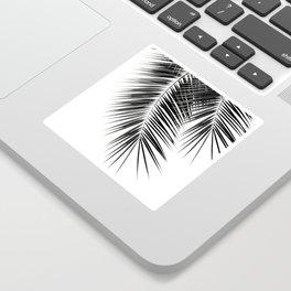 Black Palm Leaves Dream - Cali Summer Vibes #2 #tropical #decor #art #society6 Sticker