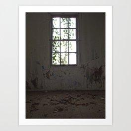 Forgotten Window Art Print