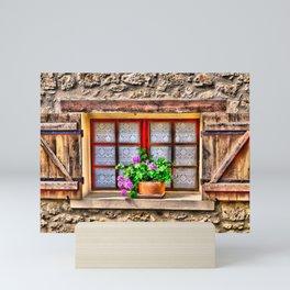 Country Window Mini Art Print