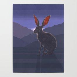 Black-tailed Jackrabbit Poster
