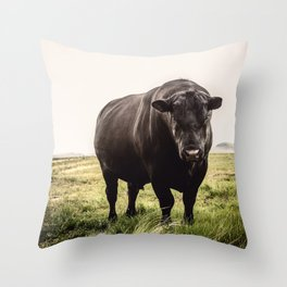Big Black Angus Bull Throw Pillow