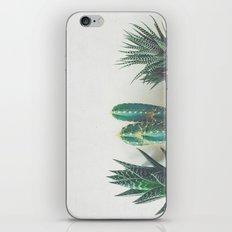 Cactus & Succulents II iPhone Skin