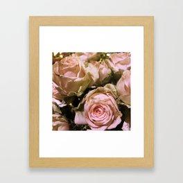 Shabby Chic Soft Peach-Pink Roses Framed Art Print