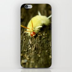 caterpillars are great iPhone & iPod Skin