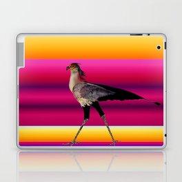 cross road Laptop & iPad Skin