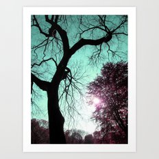 Wishing Tree Art Print