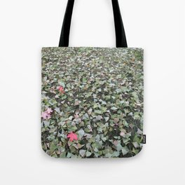 green ginkgo wishes Tote Bag