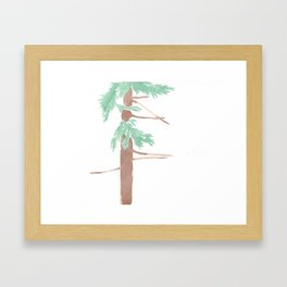 Sequoia sempervirens Study Framed Art Print