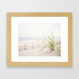 Beach Grass Coastal Photography, Seashore Jersey Shore Photograph Framed Art Print