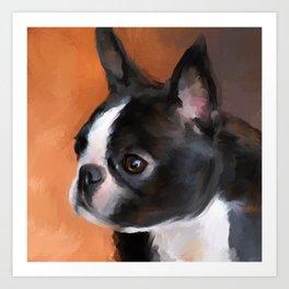 Perky Boston Terrier Art Print