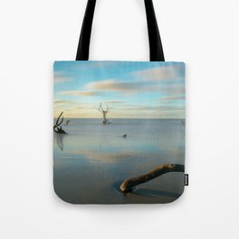 Boneyard Sunrise Tote Bag