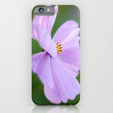 Pink Cosmo Slim Case iPhone 6s