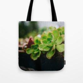 Succulent Rain Drop Tote Bag