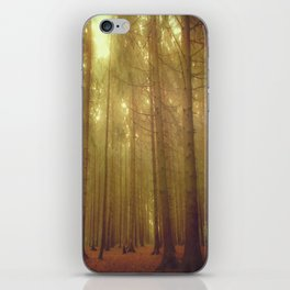 Our forest#2 iPhone Skin