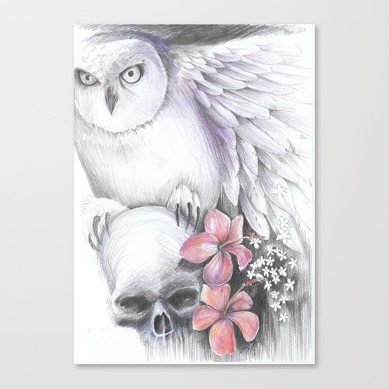owl and skull Canvas Print