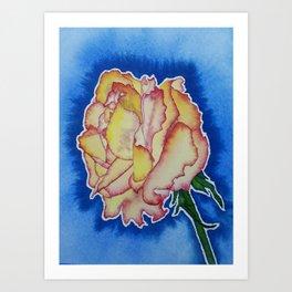 Backyard Rose Art Print