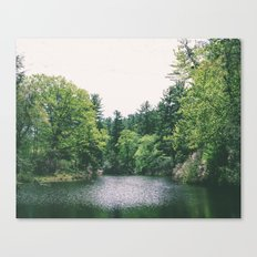 maudslay pond Canvas Print