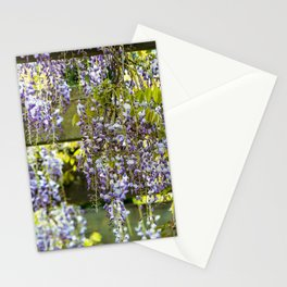Flowering Wisteria canopy Stationery Cards
