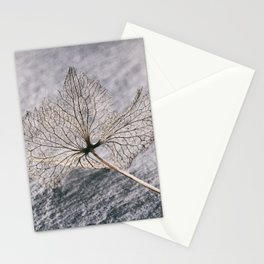 Leaf Skeleton Stationery Cards