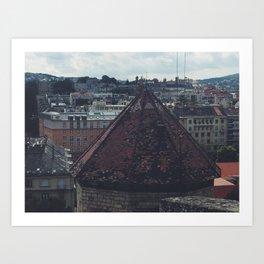 Budapest View Art Print