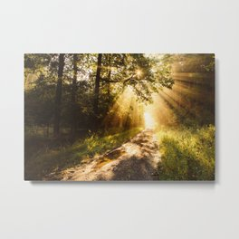 Way to work Metal Print