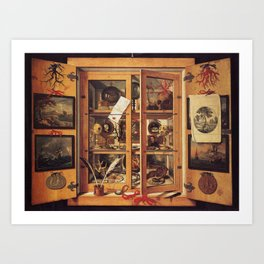 Cabinet of curiosities Art Print