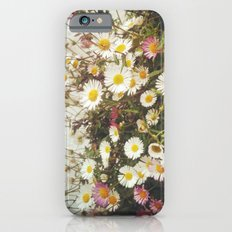 Wall of Daisies Slim Case iPhone 6s