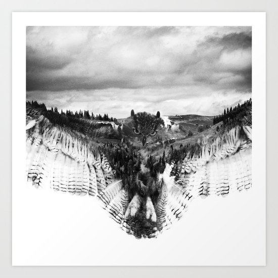 Owl Mid Flight Art Print