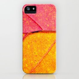 Close up view of structure of the leaf  - beautiful natural photography iPhone Case